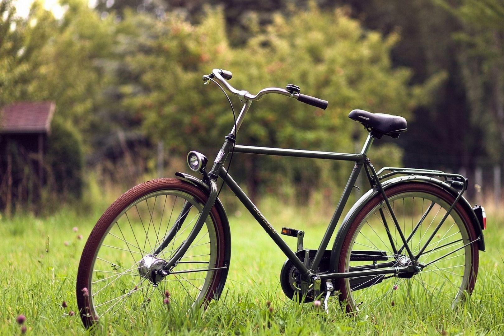 Creative_Wallpaper_Bicycle_on_the_grass_079830_ копия